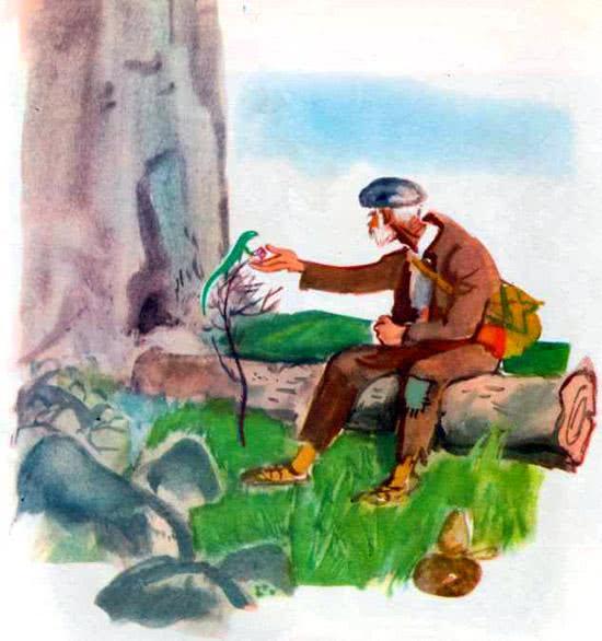 Бесценный камушек - Ангел Каралийчев. Читайте онлайн с картинками.