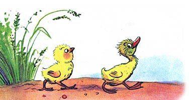 Цыплёнок и утёнок — Сутеев В.Г. С иллюстрациями автора.