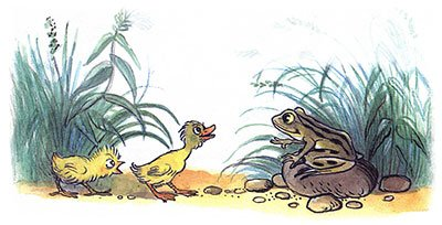 Цыплёнок и утёнок - Сутеев В.Г. С иллюстрациями автора.
