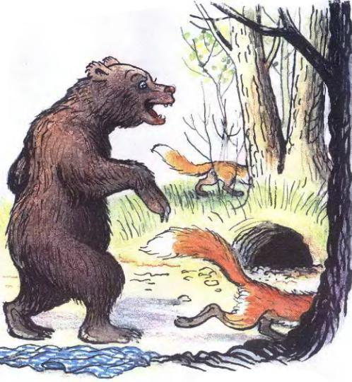 Как две лисы нору делили - Пляцковский М.С. Читать онлайн.