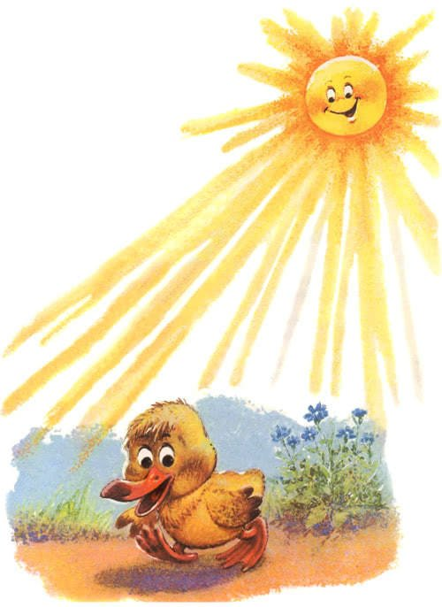 Как утенок Крячик свою тень потерял - Пляцковский М.С.
