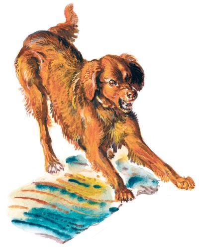 Медведко - Мамин-Сибиряк Д.Н. Читать онлайн.