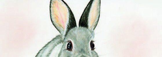 Мороз и заяц — русская народная сказка. Читать онлайн.