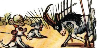 Не ходи козел в огород — Сутеев В.Г. История в картинках.