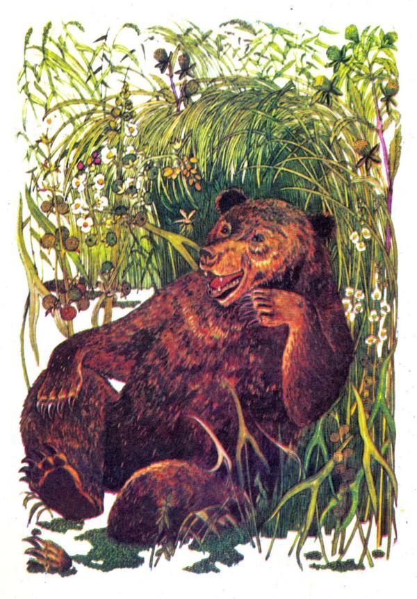 Про Комара Комаровича-длинный нос и про мохнатого Мишу-короткий хвост - Мамин-Сибиряк Д.Н.