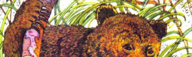 Про Комара Комаровича-длинный нос и про мохнатого Мишу-короткий хвост — Мамин-Сибиряк Д.Н.
