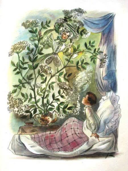 Сказка Бузинная матушка - Ганс Христиан Андерсен. Читайте онлайн.