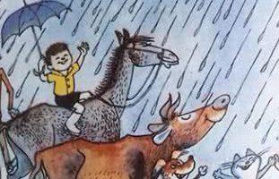 Сказка Дождь — Дональд Биссет