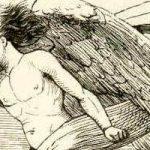 Сказка Гречиха - Ганс Христиан Андерсен. Читать онлайн.