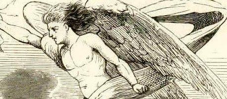 Сказка Гречиха — Ганс Христиан Андерсен. Читать онлайн.