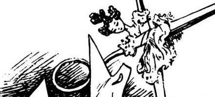 Сказка Воротничок — Ганс Христиан Андерсен. Читать онлайн. 5 (1)