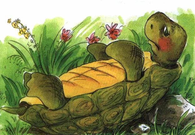Сказка о перевернутой черепахе - Пляцковский М.С. Читать онлайн.