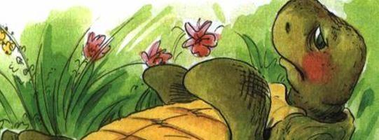 Сказка о перевернутой черепахе — Пляцковский М.С. Читать онлайн. 0 (0)
