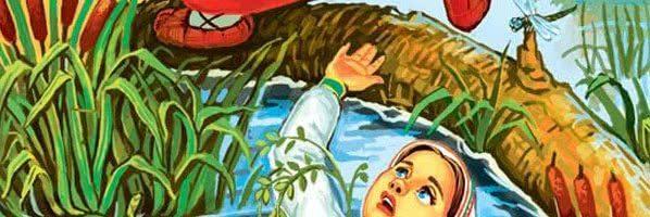 Волшебная дудочка — русская народная сказка. Читать онлайн. 0 (0)