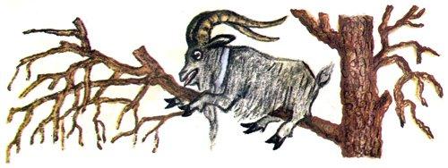 Храбрый баран - русская народная сказка. читать онлайн.