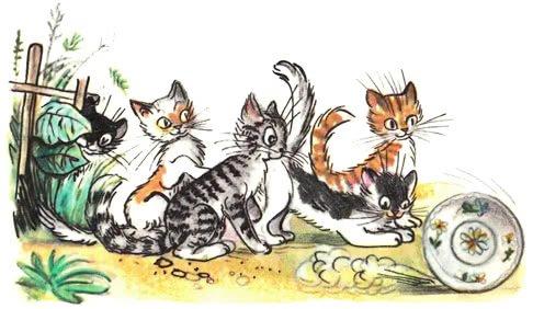 федорины коты