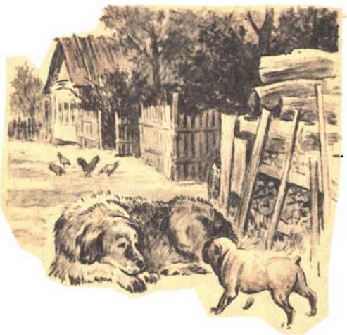 Играющие собаки - Ушинский К.Д.