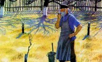 История одной яблоньки — Ушинский К.Д. Читать онлайн с описанием.