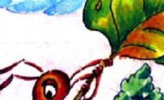 Как Муравьишка спешил домой — Бианки В.В. Сказка про приключения муравья