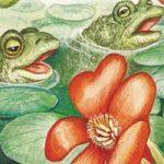 Кто о чем поет - Бианки В.В. Рассказ о том, чем животные, птицы и насекомые издают звуки.