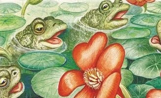 Кто о чем поет — Бианки В.В. Рассказ о том, чем животные, птицы и насекомые издают звуки.