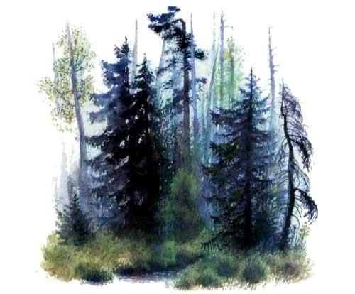 Лес и ручей - Ушинский К.Д.