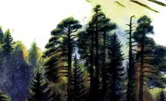 Лес и ручей — Ушинский К.Д. Читать онлайн с картинками.