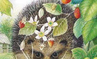 Лесной колобок — колючий бок — Бианки В.В. Сказка про ежика — Колобка.