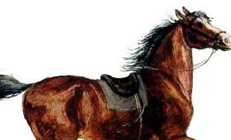Лошадка — Ушинский К.Д. Читать онлайн с картинками.