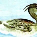 Люля - Бианки В.В. Сказка о птичке Люле, которая помогла всем животным.