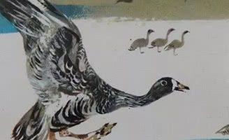 На великом морском пути — Бианки В.В. Повесть о перелётных птицах.