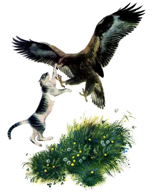 Орёл и кошка - Ушинский К.Д.