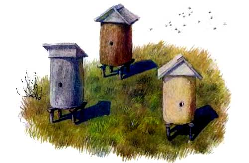 Пчелки на разведках - Ушинский К.Д.