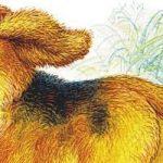 Первая охота - Бианки В.В. Сказка про щенка, отправившегося на свою первую охоту.