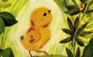 Сказка Цыпленок — Чуковский К.И. Читайте онлайн с иллюстрациями. 5 (3)