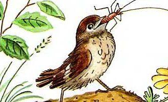 Тараканище – Чуковский К.И. Читайте онлайн с рисунками Сутеева 5 (4)