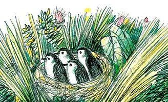 Умная птичка — рассказ Зощенко. Читать онлайн.