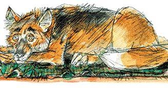 Умная собака — рассказ Зощенко. Читать онлайн.
