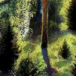 В лесу летом - Ушинский К.Д. Читать онлайн с картинками.