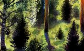 В лесу летом — Ушинский К.Д. Читать онлайн с картинками.