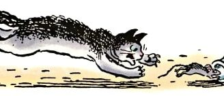 Вот какие бывают мышки — рассказ Зощенко. читать онлайн.
