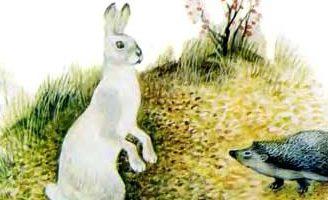 Заяц и еж — Ушинский К.Д. Читать онлайн с картинками.