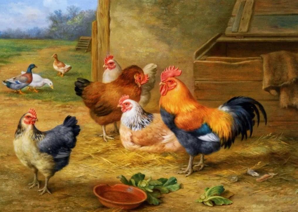 Птичьи разговоры - Бианки В.В.