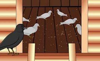Галка и голуби — Толстой Л.Н. Басня про галку, притворившуюся голубем.