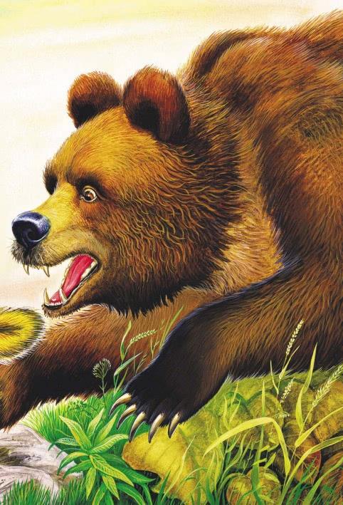 Кузяр-бурундук и Инойка-медведь - Бианки В.В.