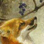 Лисица и виноград - Толстой Л.Н. Басня как лисица хотела виноград.