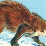 Маленькие рассказы: Голубой зверек - Бианки В.В. Рассказ о кунице.
