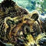 Маленькие рассказы: Как муха медведя от смерти спасла - Бианки В.В.
