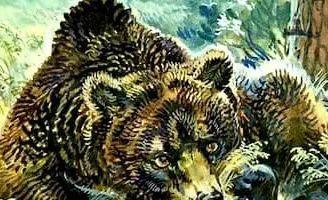 Маленькие рассказы: Как муха медведя от смерти спасла — Бианки В.В.