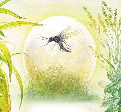 Росянка - комариная смерть - Бианки В.В.